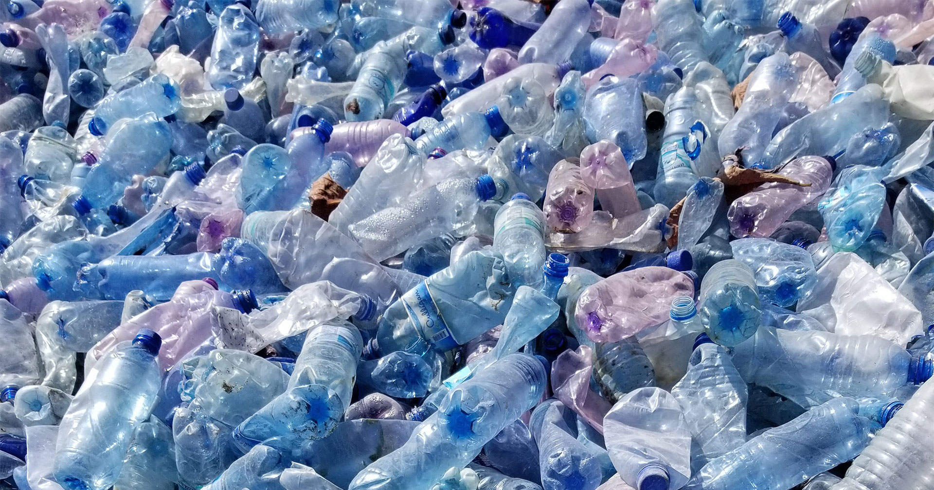 water bottle waste